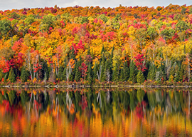 Canada and New England Fall Foliage Thumbnail